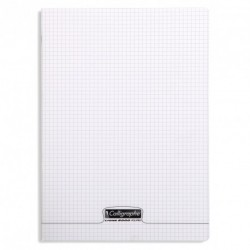 Cahier polypro Calligraphe grand format 24x32 48p petits carreaux (5x5) - incolore