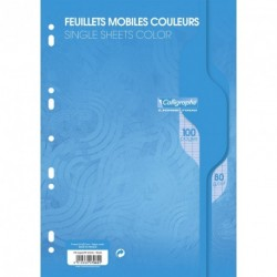 Feuilles simples format A4 21x29,7 100p grands carreaux Séyès - bleu